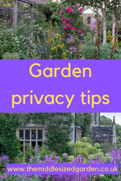 3 top garden privacy tips - how to make your garden look and feel more private