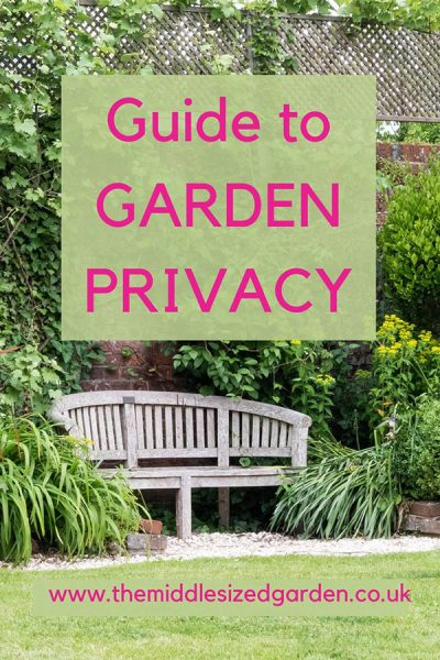 How To Increase Your Garden Privacy, Tall Potted Plants Patio Privacy Uk
