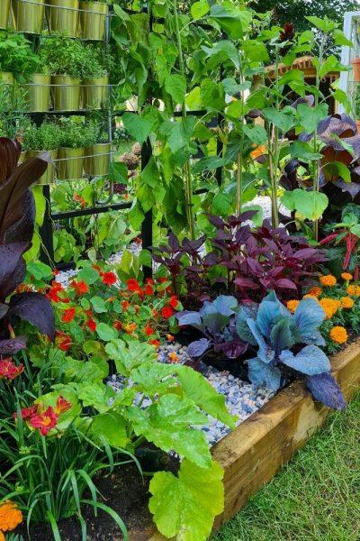 Get up and Grow garden