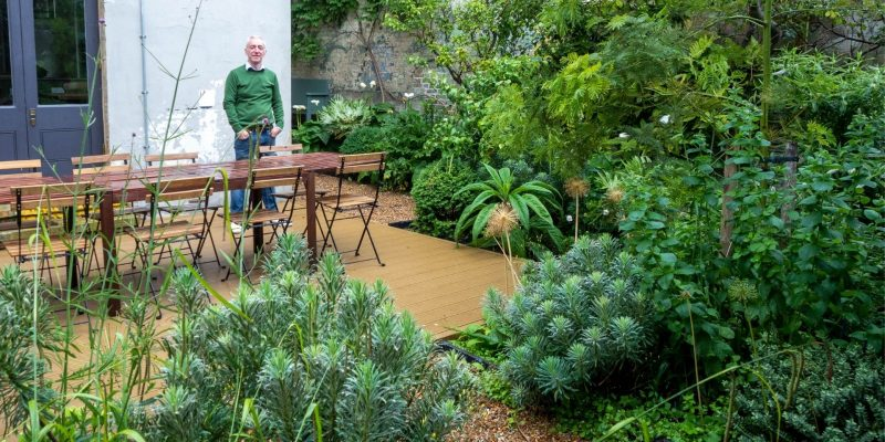 How to create a beautiful and unusual garden with a sense of place