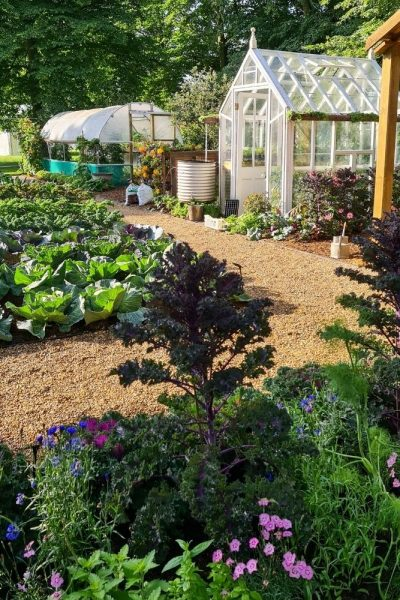 No Dig Allotment Garden
