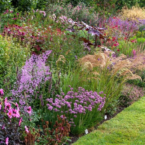 Think about proportion when planning a border