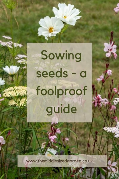 Grow flowers yourself fromseed