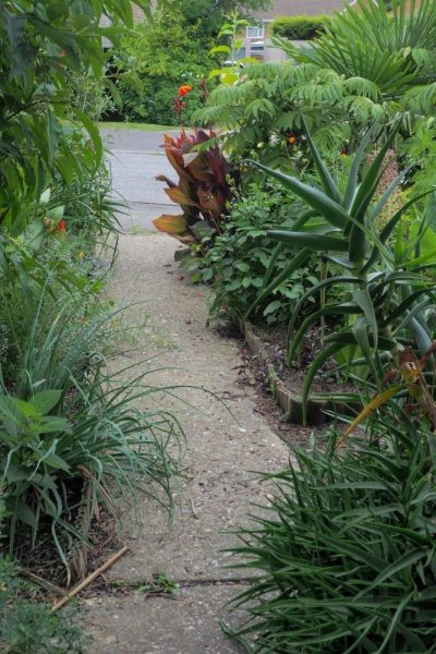 Philip Oostenbrink front garden