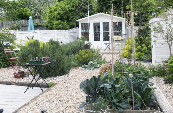 How To Create A Delightful Seaside Garden The Middle Sized
