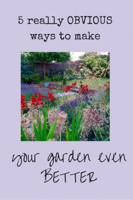 Photograph your garden in all seasons to keep a record