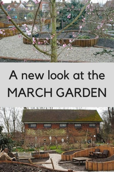 Useful tips from the March garden