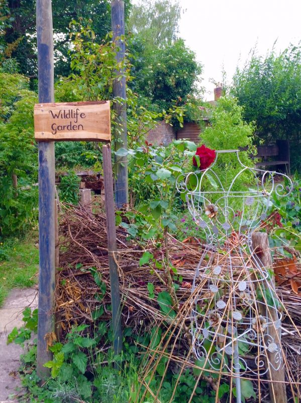 A perfect wildlife garden - the Abbey Physic Community Garden in Faversham