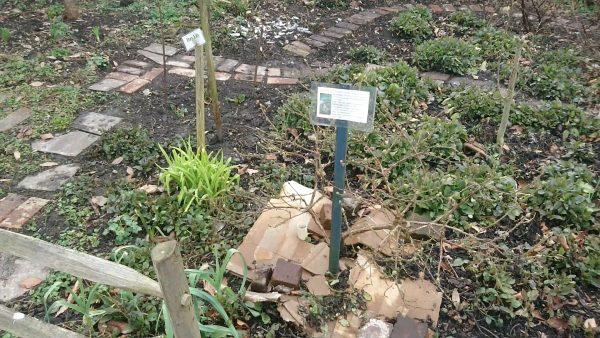 Organic weed deterrent