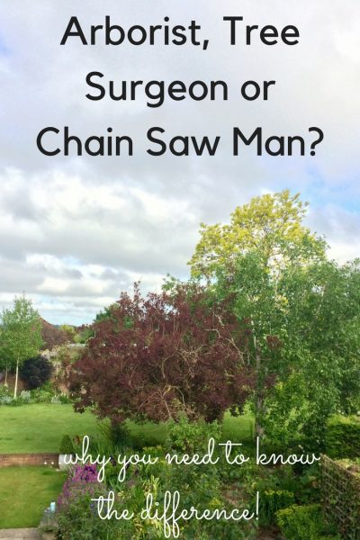 Why you need to know the difference between an arborist, tree surgeon and a chain saw man