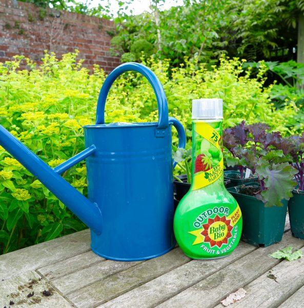 Baby Bio Outdoor Fruit & Vegetables