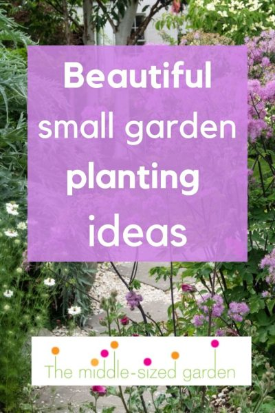 beautiful small garden planting ideas