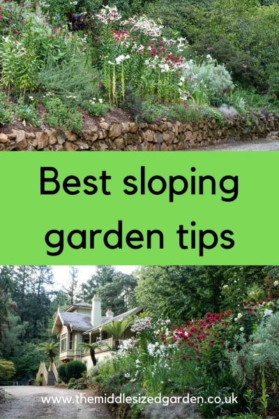 Best sloping garden tips