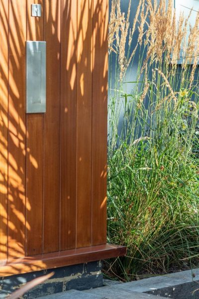 Grasses are good coastal garden plants