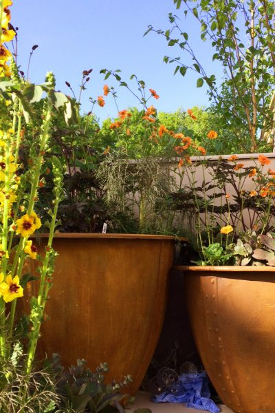 The Best Plants For Amazingly Low Maintenance Garden Pots