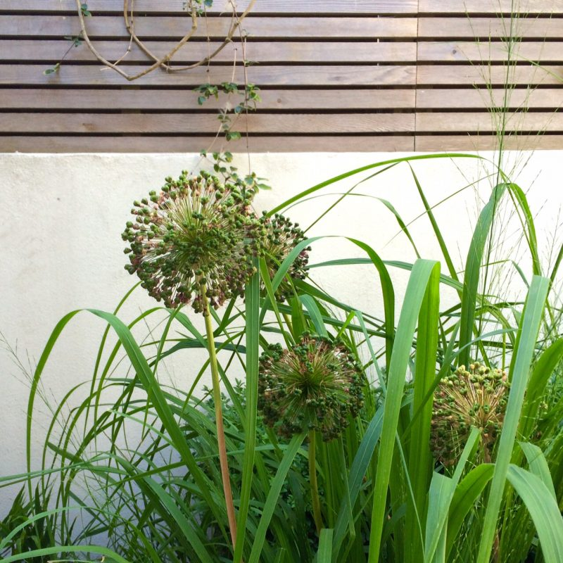 Choose plants which look good for a long period of interest