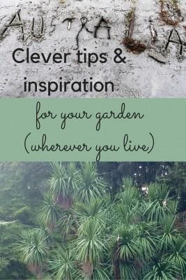 Australian tips for Northern hemisphere gardens...