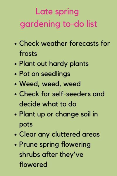 Late spring gardening to-do list
