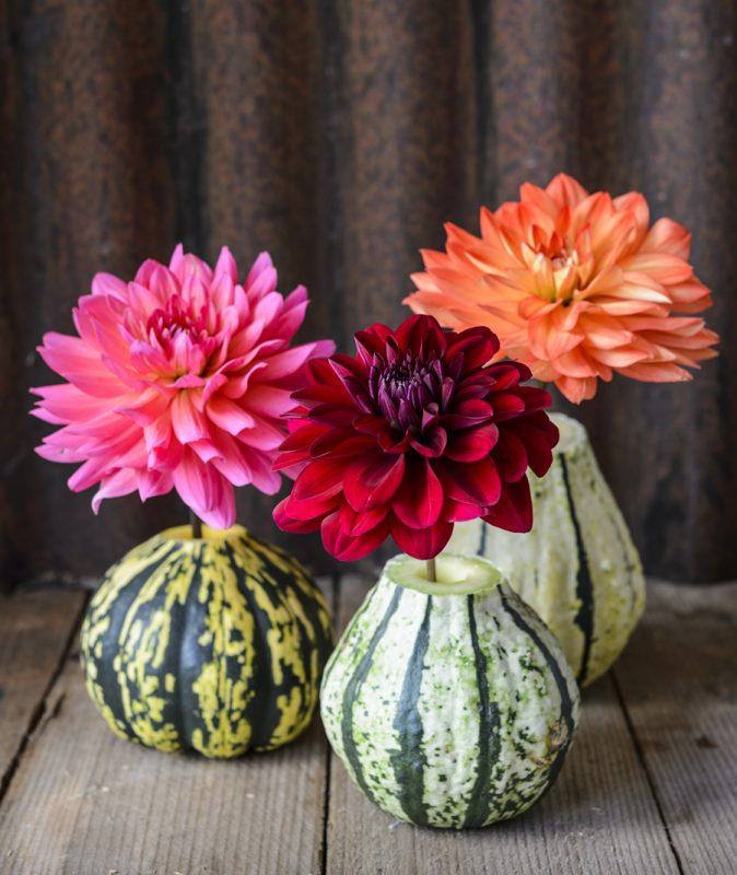 Winter squash vases - stylish fall decorating ideas