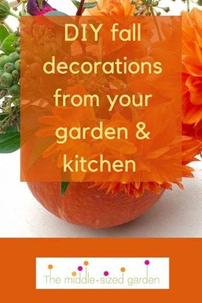 DIY fall decorations from your garden and kitchen