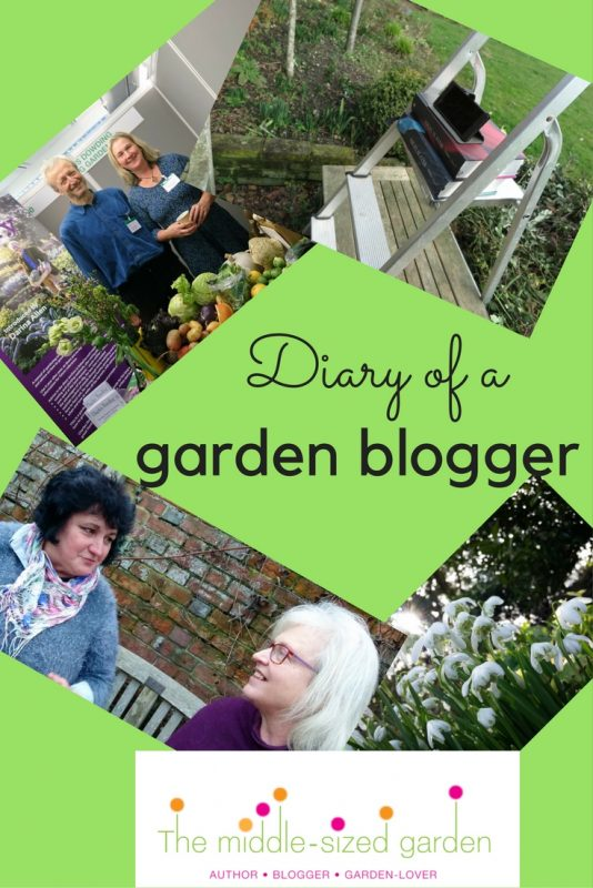 What does a garden blogger do?