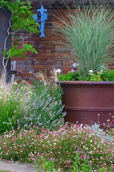 The best plants for amazingly low maintenance garden pots for Low maintenance potted plants