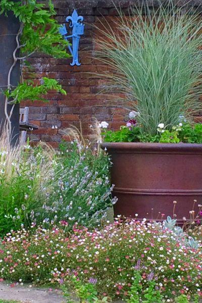 Grasses in planter at Doddington Place Gardens