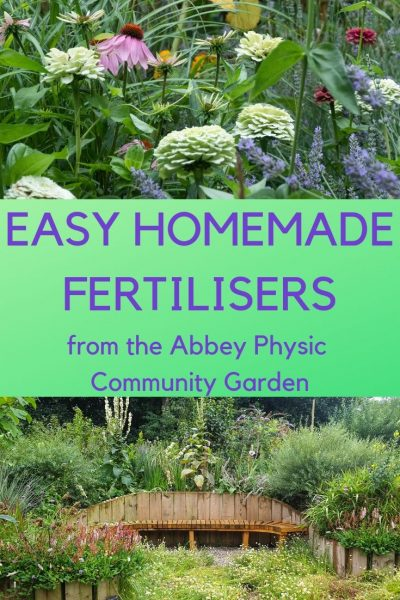 5 homemade fertilizers to make your garden grow