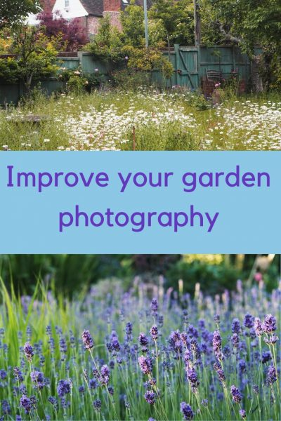 Easy ways to improve your garden photography - even if you hate tech! #gardenphotography