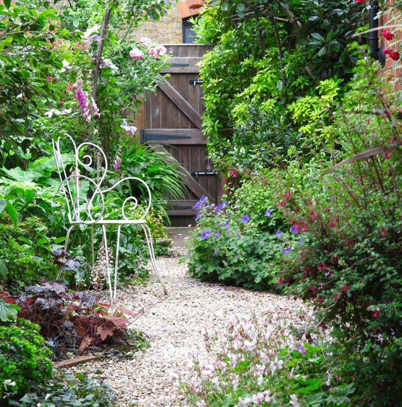 Lush planting and gravel in a narrow town garden