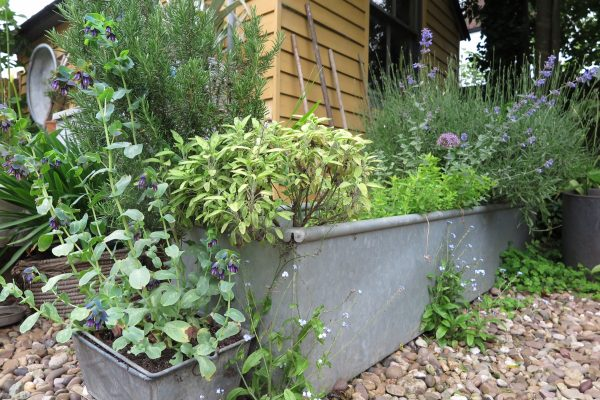 You can buy agricultural troughs from farm suppliers