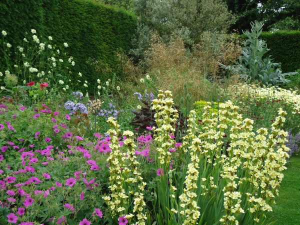 Summer colour from the Sunken Garden