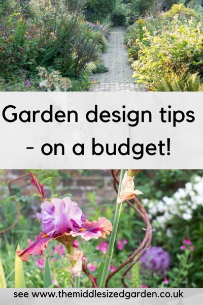 Small garden design on a budget