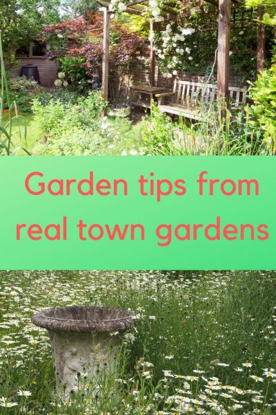 Garden secrets from your neighbour's garden