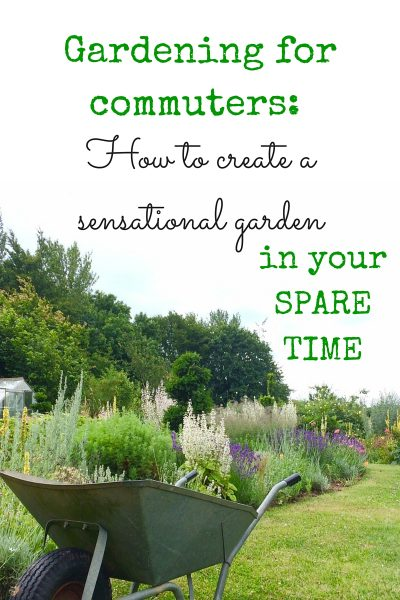 Tips for confident, successful gardening