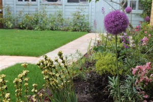 Caroline Garland's garden