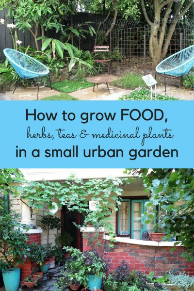 How to grow food in a small urban garden