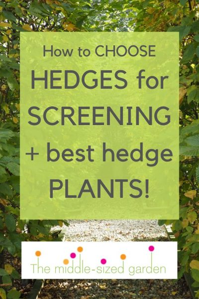 How to choose hedges for privacy