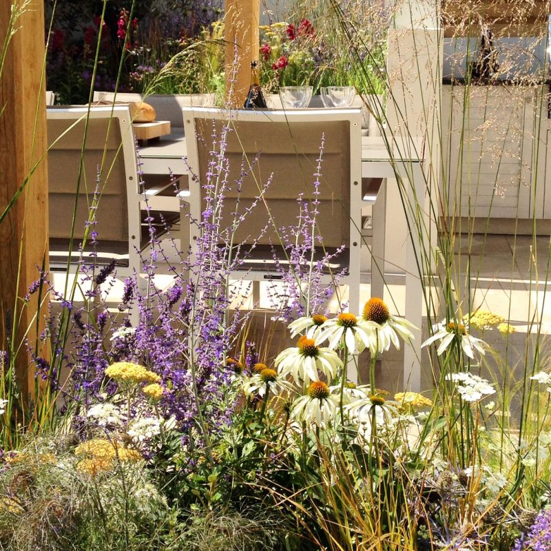 A show garden kitchen at last year's Hampton Court. Hard to match such perfection at home.
