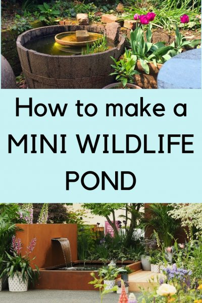 How to make a mini wildlife pond #wildlifegarden #sustainableliving