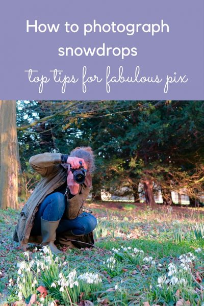 Top tips for beautiful pix