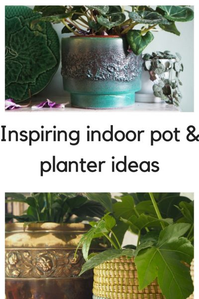 Inspiring indoor pot & planter ideas