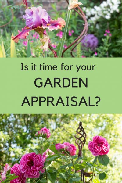 If you want to improve your garden, book a garden appraisal. #gardenrenovation #improvegarden