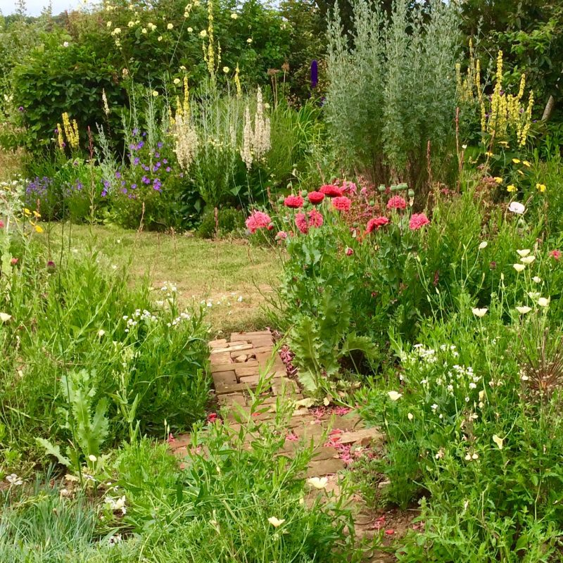 Tips for planting and maintaining larger gardens