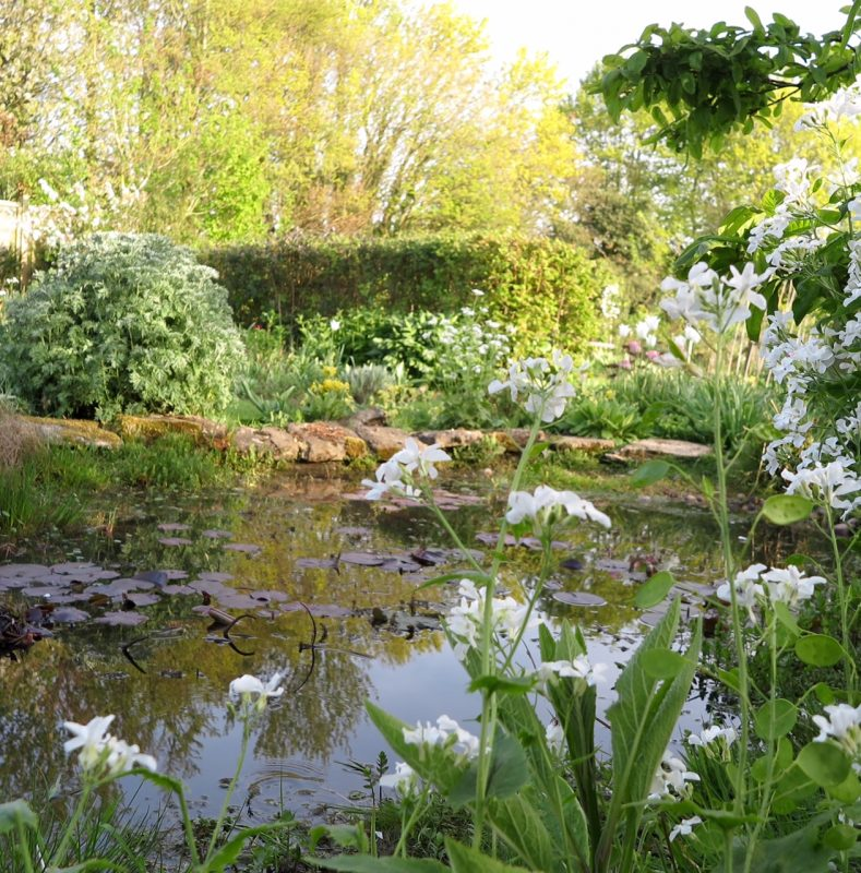 Gardens open for the NGS