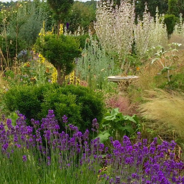 How to create a perfect country garden