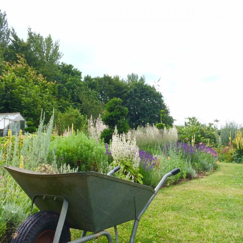 Tip 1: a country garden is much more affected by its location than a town garden