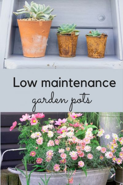 Ideas for low maintenance garden pots and planters.