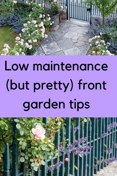 Low maintenance front garden tips