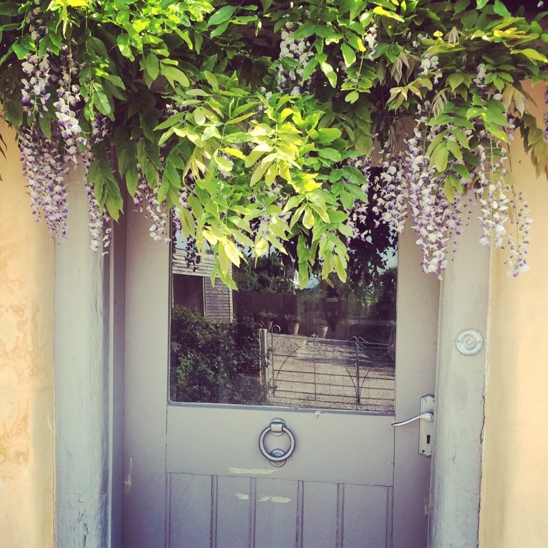 The front door is colour-themed with the wisteria
